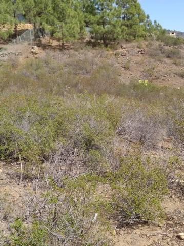 imagen 2 de Venta de finca rústica en Candelaria (Tenerife)