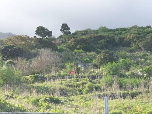 imagen 1 de Venta de terreno en Mazo (Tenerife)