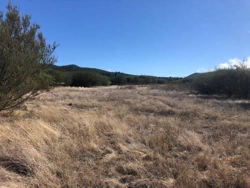 imagen 4 de Venta de finca ubicada en Reserva Natural (Tanque de Arriba)