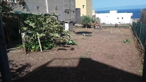 imagen 1 de Venta de parcela para construir o plantar en Punta del Hidalgo