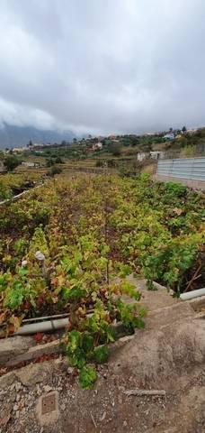 imagen 1 de Venta de terreno en La Orotava (Tenerife)