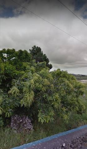 imagen 2 de Venta de bonito terreno en la zona del Paso (Tenerife)
