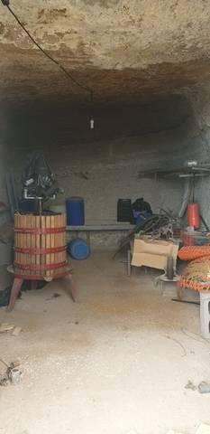 imagen 2 de Venta de finca rústica con vivienda en Fasnia