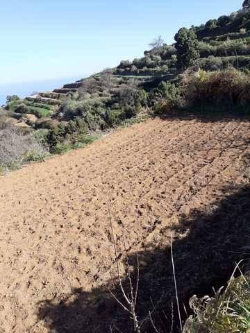 imagen 2 de Venta de terreno en La Guancha