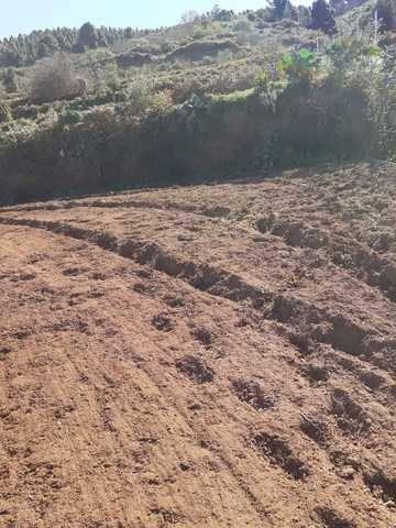imagen 3 de Venta de terreno en La Guancha