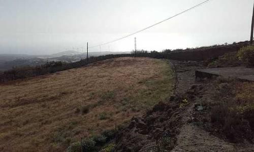 imagen 3 de Venta de terreno con cueva y cuarto de aperos en Arico (Tenerife)