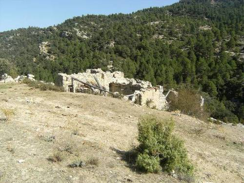 imagen 2 de Venta de finca rústica con pinar y truferas en Teruel