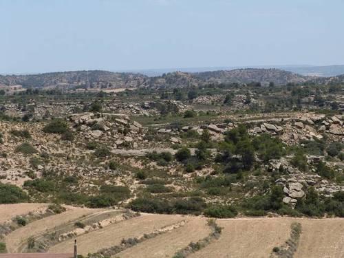 imagen 3 de Venta de finca de caza mayor y menor y Alcañiz (Teruel)