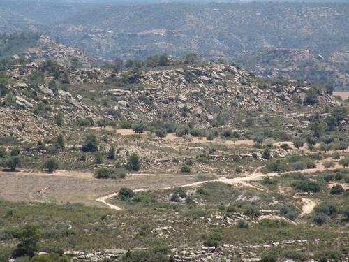 imagen 2 de Venta de finca de caza mayor y menor y Alcañiz (Teruel)