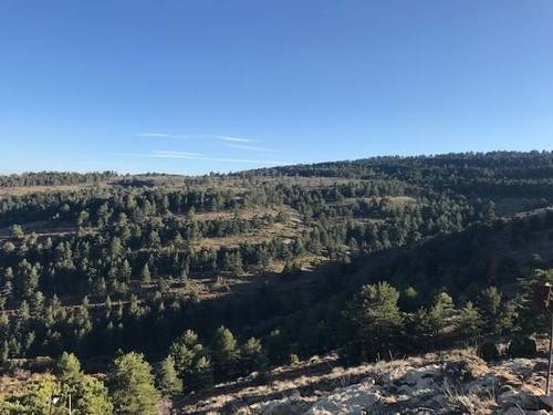 imagen 1 de Venta de finca con masía en Linares de Mora (Teruel)