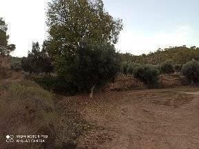 imagen 2 de Venta de finca con masía en Calaceite