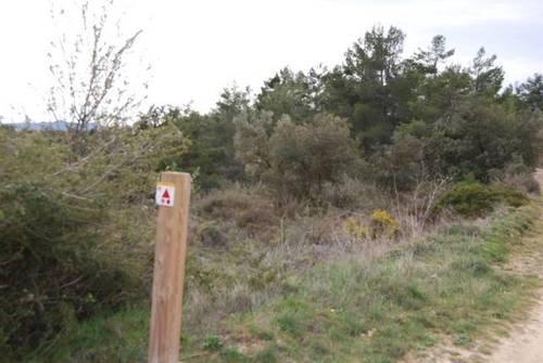 imagen 6 de Venta de finca con árboles milenarios en La Fresneda (Teruel)