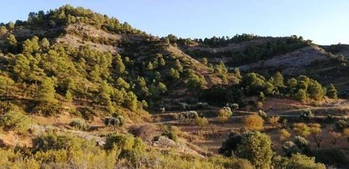 imagen 1 de Venta de finca rústica en Beceite (Teruel)