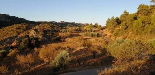 imagen 2 de Venta de finca rústica en Beceite (Teruel)