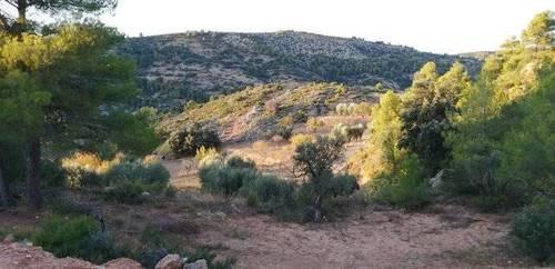 imagen 5 de Venta de finca rústica en Beceite (Teruel)