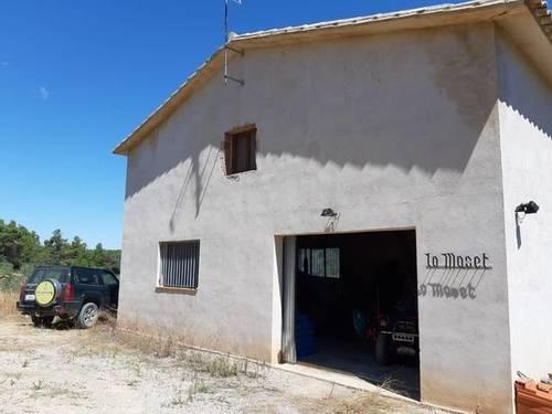 imagen 1 de Venta de finca de olivos en Torre del Compte (Teruel)
