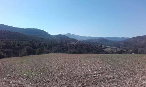imagen 2 de Venta de finca con casa rural y borda en Las Parras de Castellote (Teruel)