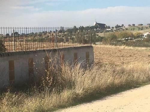 imagen 5 de Venta de finca rústica bien ubicada en Santa Cruz del Retamal (Toledo)