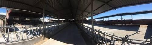 imagen 5 de Venta de explotación ganadera en Ugena
