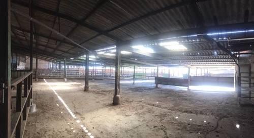 imagen 6 de Venta de explotación ganadera en Ugena