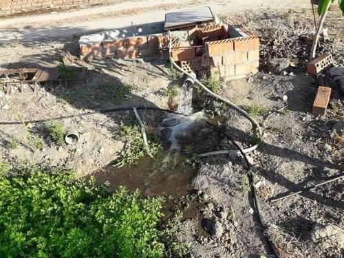 imagen 4 de Venta de olivar y huerta en La Pueblanueva (Toledo)