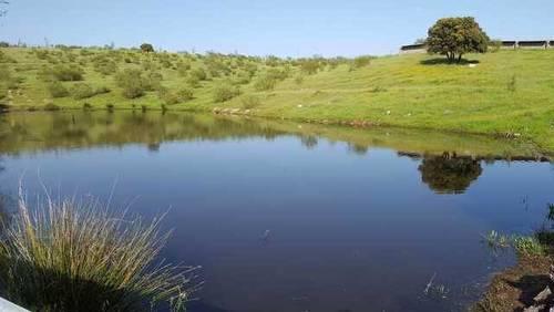 imagen 3 de Venta de finca con núcleo zoológico en Almorox (Toledo)