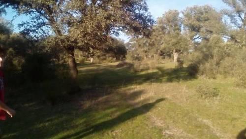 imagen 1 de Venta de finca rústica con agua y luz en Nombela (Toledo)