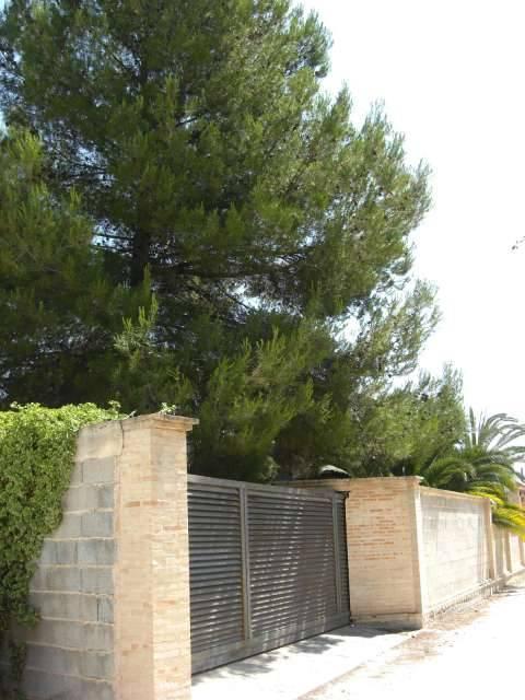 imagen 6 de Venta de terreno en Albaida (Valencia)