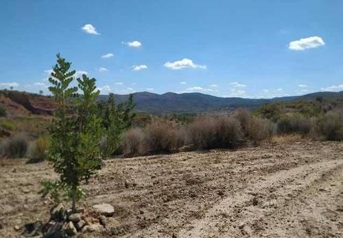 imagen 3 de Venta de terreno en Gestalgar