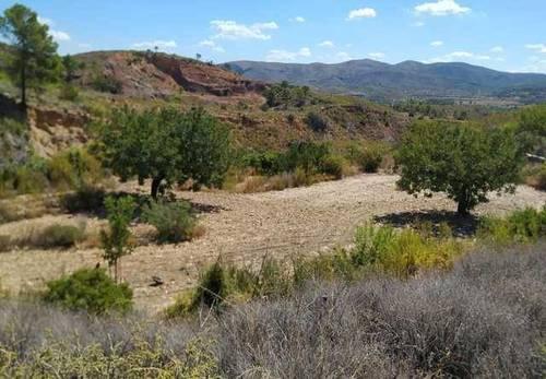 imagen 2 de Venta de terreno en Gestalgar