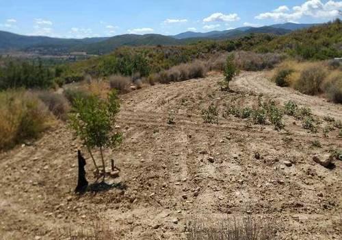 imagen 4 de Venta de terreno en Gestalgar