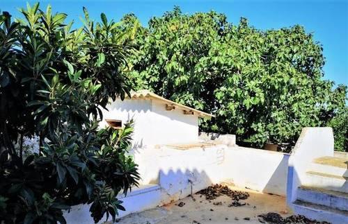 imagen 6 de Venta de finca de naranjos con casa rural en Valencia