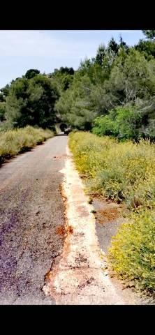 imagen 2 de Venta de terreno rústico a pie de carretera en Gilet
