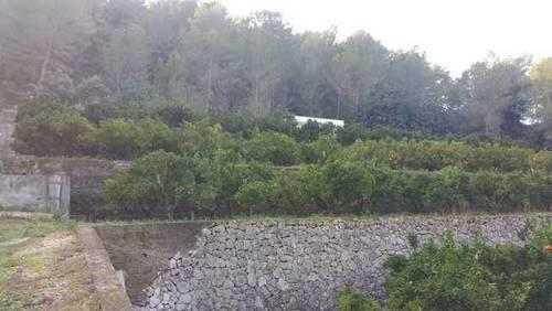 imagen 1 de Venta de finca con vistas al mar y casa rural en Valencia