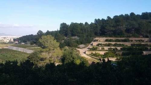 imagen 4 de Venta de finca con vistas al mar y casa rural en Valencia