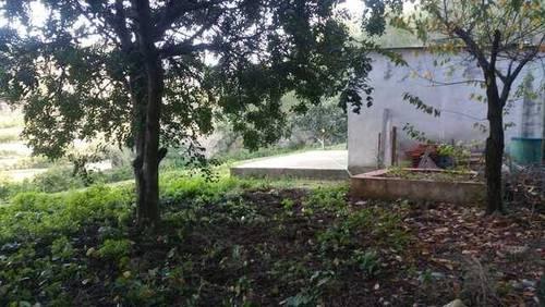 imagen 5 de Venta de finca con vistas al mar y casa rural en Valencia