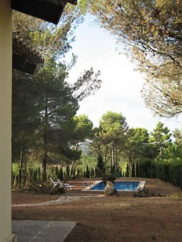 imagen 3 de Venta de finca con casa rural en Requena
