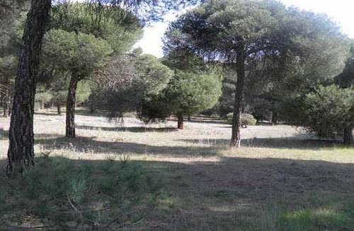 imagen 3 de Venta o alquiler de parcela en Alcazarén (Valladolid)