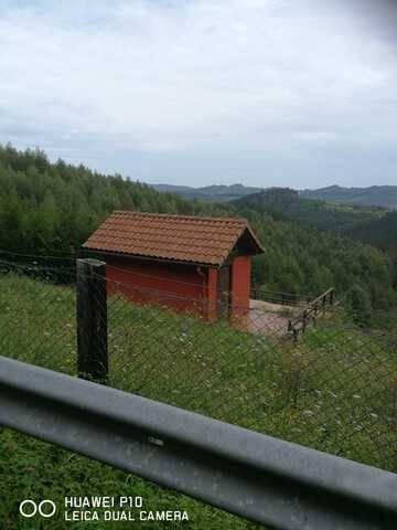 imagen 1 de Venta de finca con cabaña en Morga