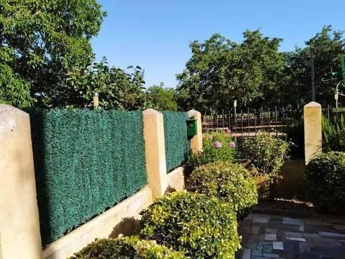 imagen 5 de Venta de finca de nogales con vivienda en Benavente