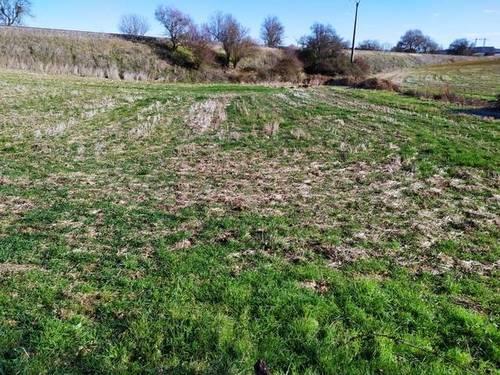imagen 1 de Venta de terreno en Roales (Zamora)