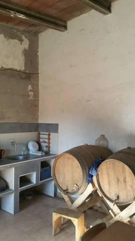 imagen 4 de Venta de finca con casita en Zaragoza