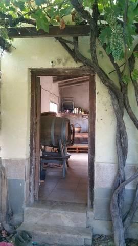 imagen 3 de Venta de finca con casita en Zaragoza