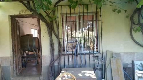 imagen 6 de Venta de finca con casita en Zaragoza