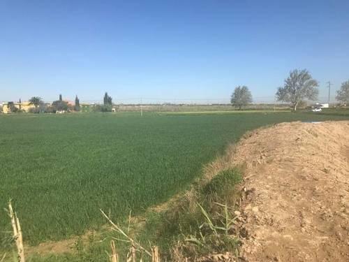 imagen 3 de Venta de terreno rústico en Movera (zaragoza)