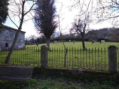 imagen 3 de Venta de monasterio en Chantada (Lugo)