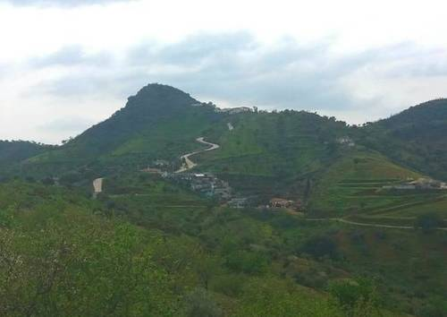 imagen 1 de Venta de casa con terreno en Almogia (Málaga)