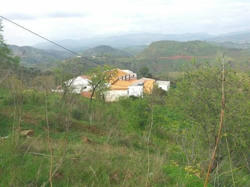 imagen 5 de Venta de casa con terreno en Almogia (Málaga)