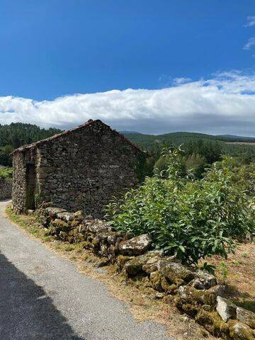 imagen 7 de Venta de casa rural en La Ribeira Sacra, Sober (Lugo)