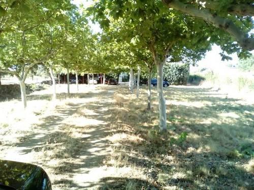 imagen 7 de Venta de vivienda en entorno rural con parcela en Villar de Plasencia (Cáceres)